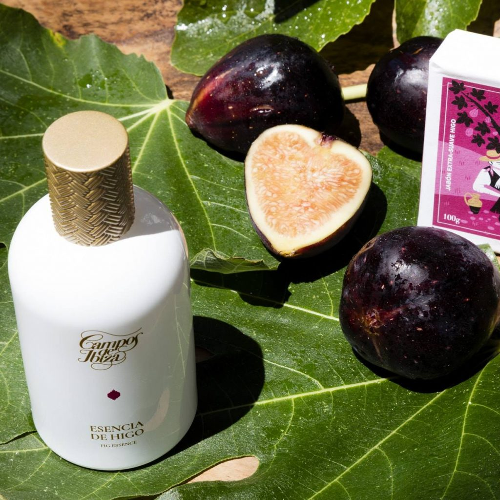 campos de ibiza fig